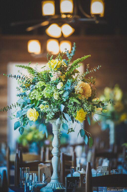 Just Priceless Weddings